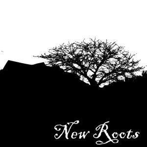 newroots2c1